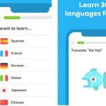 איך ללמוד שפות בחינם